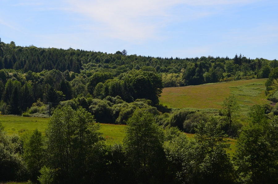 The sanctuary habitat in France