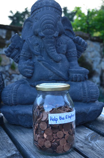 Fundraising Ideas Wishlist European Elephant Sanctuary